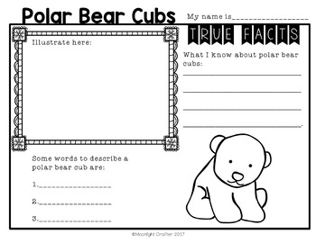 Polar Bears: Non-Fiction and Fiction Materials