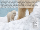 Polar Bears: A Nonfiction Text