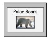 Polar Bears: A Nonfiction text and Follow Up Activities