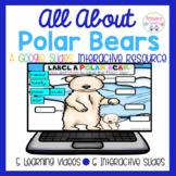 Polar Bears All About Google Slides Interactive Activity