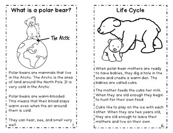 Polar Bears! An Integrated ELA and Science Book Study