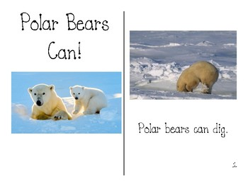 Polar Bears CAN Guided Reading Books - Teacher Copy and Student Copy