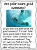 Polar Bears Freebie | Differentiated Close Reading