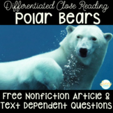 Polar Bears Freebie | Differentiated Close Reading