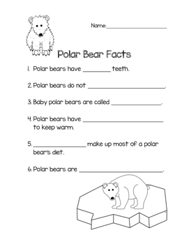 Polar Bears Facts