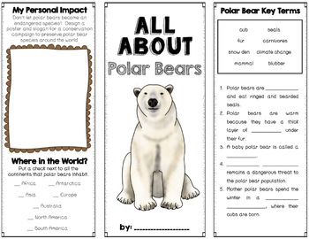 Polar Bears Foldable Brochure Research Project, Using Informational Text, Vocab