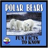 Polar Bears PowerPoint - Fun Facts About Polar Bears