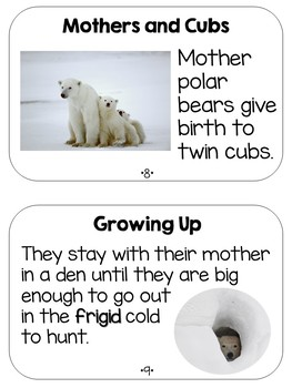 Polar Bears Informational/Nonfiction Guided Reading Texts