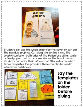 POLAR BEARS LAPBOOK - Templates and Resources for Nonfiction Text