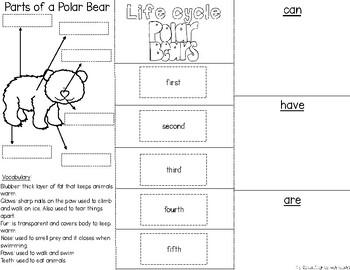 Polar Bears Interactive Trifold Brochure