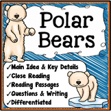 Polar Bears Main Idea and Details