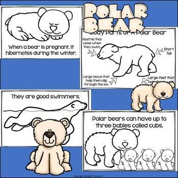 Polar Bears Mini Book for Early Readers