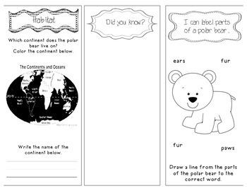 Polar Bears Non-Fiction Interactive Brochure CCSS Aligned