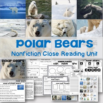 Polar Bears Nonfiction Close Reading & Visual Vocabulary Unit
