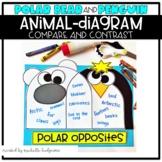 Polar Bears Penguins Compare Contrast Craftivity Kindergar