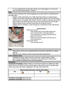 Polar Bears - The Importance of Fat / Blubber (LESSON PLAN)