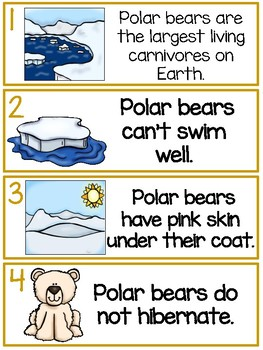 Polar Bears - True or False