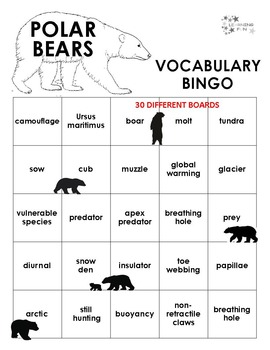Polar Bears Vocabulary Bingo