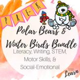 Polar Bears & Winter Birds Bundle -Literacy, Math, Social