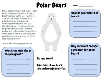 Polar Bears - Reading Comprehension Passage