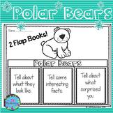 Arctic Animals - Polar Bears Writing Flap Books!