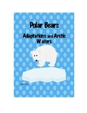 Polar Bears and Adaptions: An Exploration of the Arctic