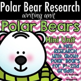 Polar Bear Research