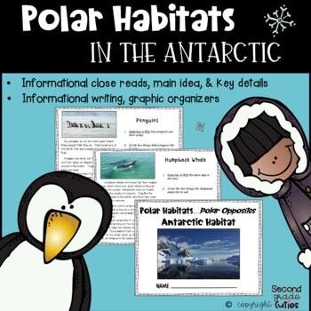 PENGUINS live at the South Pole!....An Antarctic Habitat