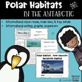 PENGUINS live at the South Pole!....An Antarctic Habitat