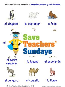 Polar/Desert Animals in Spanish Worksheets, Games, Activit
