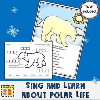 Polar Life Songs & Rhymes   Arctic   Antarctic   Polar Bears   Penguins