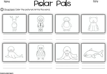 Polar Pals- Vocabulary Pack