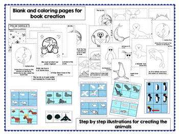 Polar Animals - Let's Make a Book