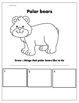 Polar bear activities