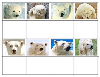 Polar Bears: Expressions  Mini Matching Cards