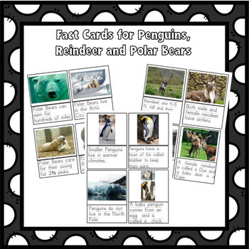 Winter Animals Polar Bears, Reindeer and Penguins Research Writing