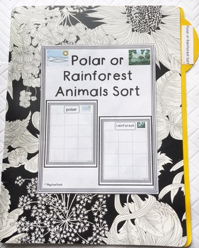 Polar or Rainforest Sort for Autism Early Childhood Special Education