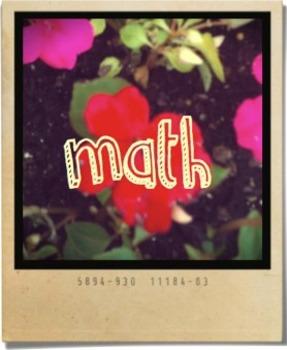 Polaroid Schedule Cards