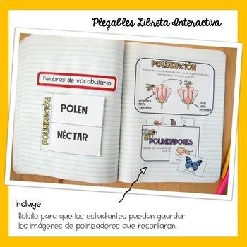 Polinización Libreta Interactiva