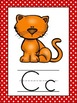 Polka Dot Themed Alphabet Posters