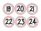 Polka Dot Number Circles 1-24