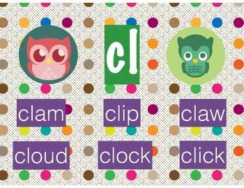 Polka Dot Owl Beginning Blends and Digraphs