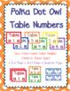 Polka Dot Owl Classroom Theme 2