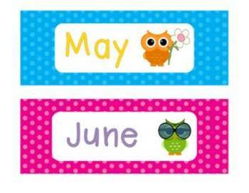 Polka Dot and Owl Calendar/Weather Set