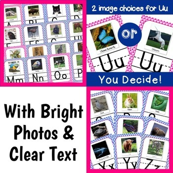 Polkadot Classroom Decor Alphabet Posters: Animal Photos
