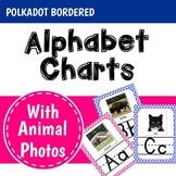 Polkadot Classroom Decor Alphabet Posters: Animal Photos