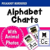 Alphabet Posters with Animal Photos in a Polkadot Theme