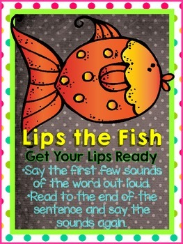 Polkadots Beanie Baby Reading strategies