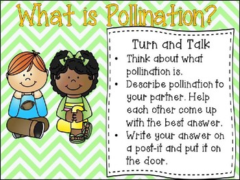 Pollen, Pollination, and Pollinators PPT (An Introduction)