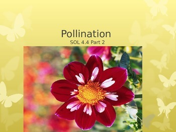 SOL 4.4: Pollinating and Spore Producing Plants PowerPoint